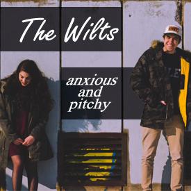 wilts copy